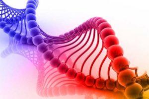 Identifican nuevos factores celulares vinculados con VIH